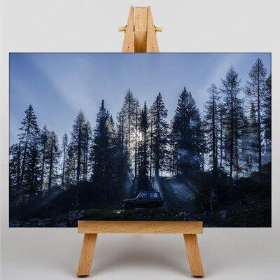 Big Box Art Sunlight Through Trees Photographic Print on Canvas