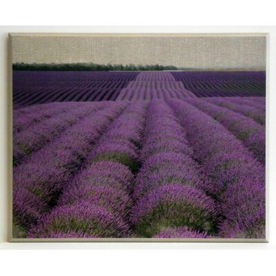 ERGO-PAUL Lavender on Canvas 2 Painting Print