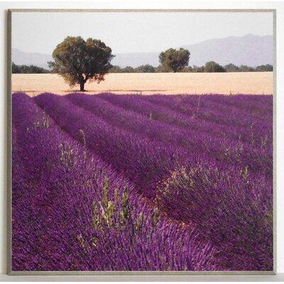 ERGO-PAUL Lavender View 2 Painting Print