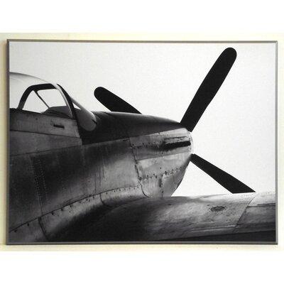 ERGO-PAUL P51d Mustang Painting Print