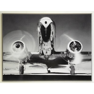 ERGO-PAUL Front View of a Passenger Plane Painting Print