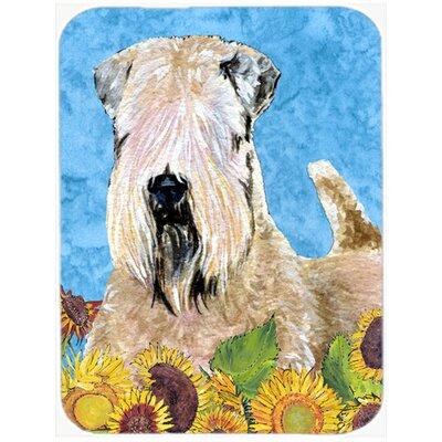 Soft Coated Wheaten Terrier Glass Cutting Board