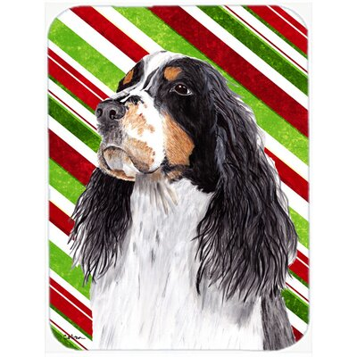 Springer Spaniel Candy Cane Holiday Christmas Glass Cutting Board