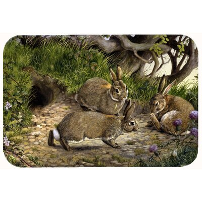 "The Rabbit Hole Kitchen/Bath Mat Size: 24"" W x 36"" L"