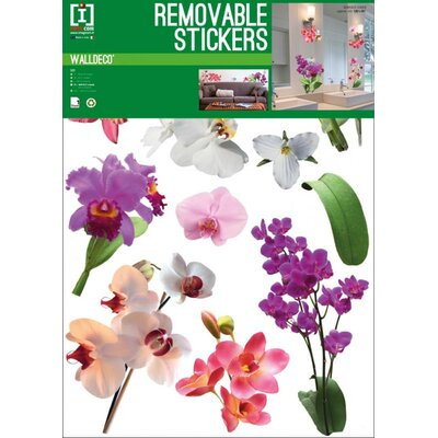 Imagicom Orchid Wall Sticker