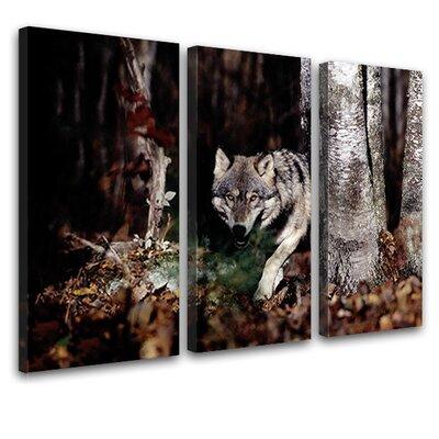 LanaKK Wolf 3 Piece Photographic Print on Canvas Set