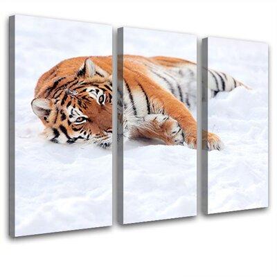 LanaKK Beauty 3 Piece Photographic Print on Canvas Set