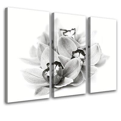 LanaKK Orchid Blossom 3 Piece Photographic Print on Canvas Set