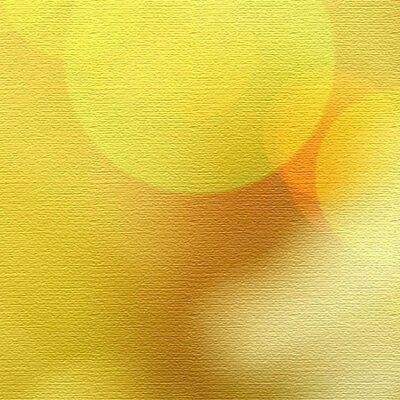 LanaKK Daisies 5 Piece Photographic Print on Canvas Set