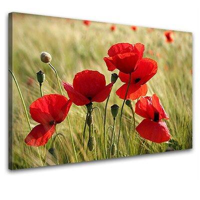LanaKK Poppies Photographic Print on Canvas