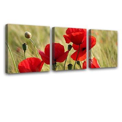 LanaKK Poppies 3 Piece Photographic Print on Canvas Set