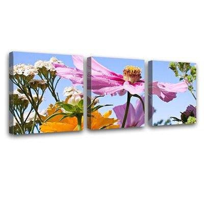 LanaKK Field Flowers 3 Piece Photographic Print on Canvas Set