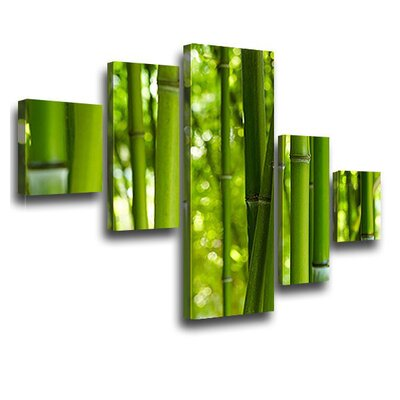 LanaKK Bamboo 5 Piece Photographic Print on Canvas Set