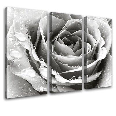 LanaKK Love 3 Piece Photographic Print on Canvas Set