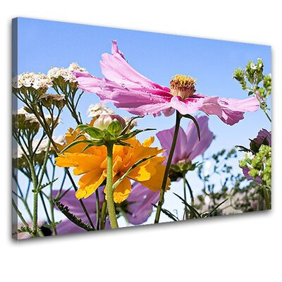 LanaKK Field Flowers Photographic Print on Canvas