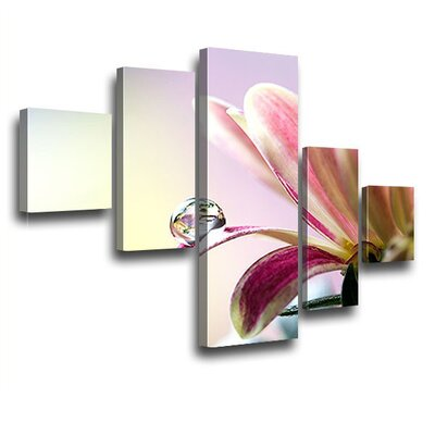 LanaKK Springtime 5 Piece Photographic Print on Canvas Set