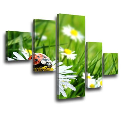 LanaKK Florets 5 Piece Photographic Print on Canvas Set
