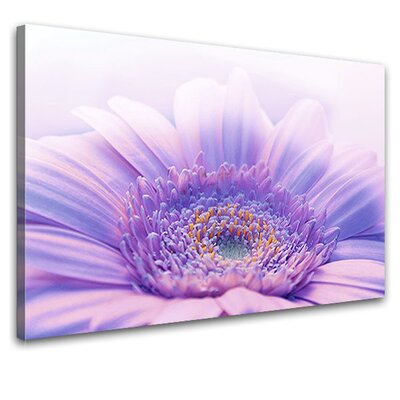 LanaKK Gerbera Photographic Print on Canvas