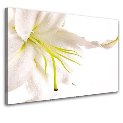 LanaKK Lily Photographic Print on Canvas
