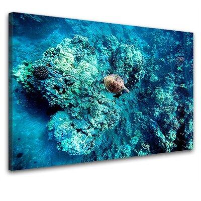 LanaKK Coral Reef Photographic Print on Canvas