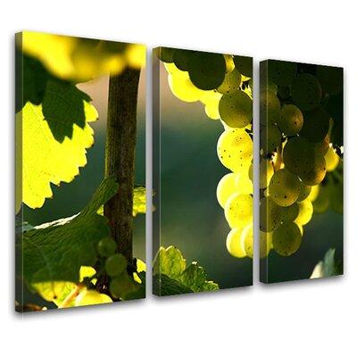 LanaKK Grapes 3 Piece Photographic Print on Canvas Set