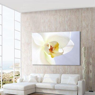 LanaKK Orchid Photographic Print on Canvas