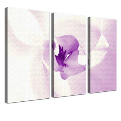 LanaKK Orchid 3 Piece Photographic Print on Canvas Set