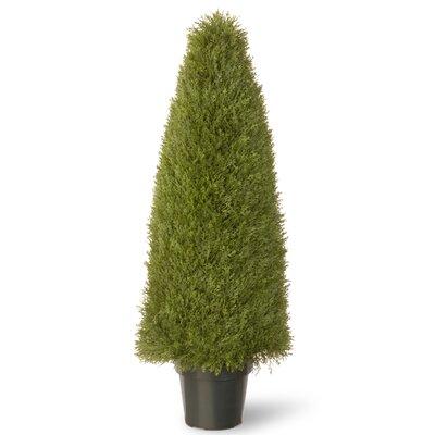 """Carpentersville Juniper Upright Desk Top Plant in Pot Size: 48"""" H x 15"""" W x 15"""" D"""