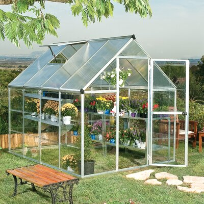Shearson 6 Ft. W x 8 Ft. D Greenhouse Frame Finish: Silver