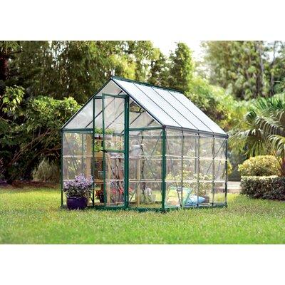 Shearson 6 Ft. W x 8 Ft. D Greenhouse Frame Finish: Green