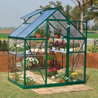 Shearson 6 Ft. W x 4.5 Ft. D Greenhouse Frame Finish: Green
