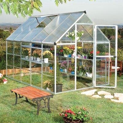 Shearson 6 Ft. W x 10 Ft. D Greenhouse