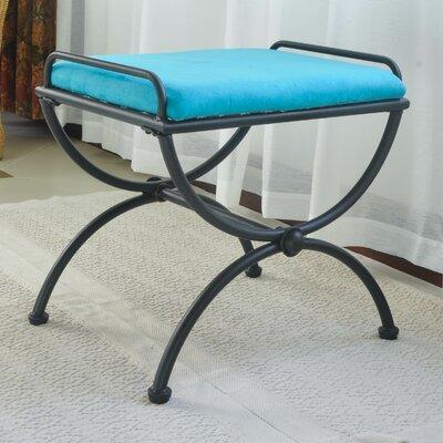 Blomberg Contemporary Iron Vanity Stool Color: Aqua Blue