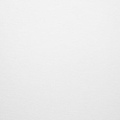 """Gary 27"""" Bar Stool Color: Stainless Steel, Upholstery: White Velvet"""