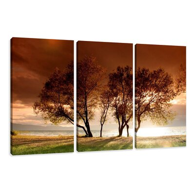 Urban Designs Trees 3 Piece Photographic Print Wrapped on Canvas Set