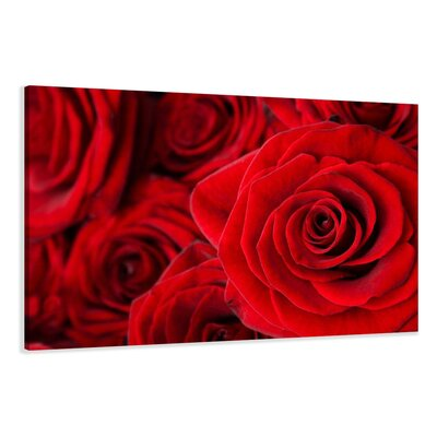 Urban Designs Roses Blossoms Photographic Print Wrapped on Canvas