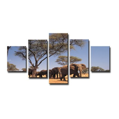 Urban Designs African Elephants 5 Piece Photographic Print Wrapped on Canvas Set