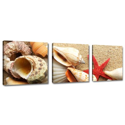 Urban Designs Mussels 3 Piece Photographic Print Wrapped on Canvas Set