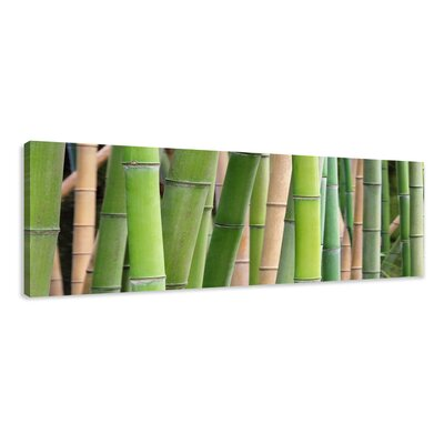 Urban Designs Bamboo Photographic Print Wrapped on Canvas