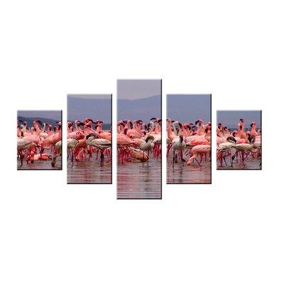 Urban Designs Flamingos 5 Piece Photographic Print Wrapped on Canvas Set