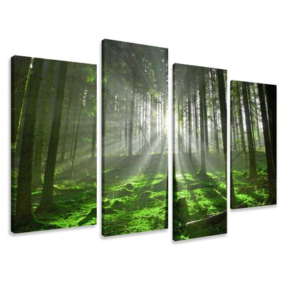 Urban Designs Forest Trees Clearing 4 Piece Photographic Print Wrapped on Canvas Set