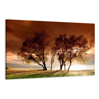 Urban Designs Trees Photographic Print Wrapped on Canvas