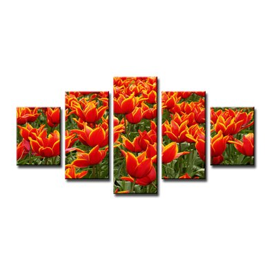 Urban Designs Tulpen 5 Piece Photographic Print Wrapped on Canvas Set