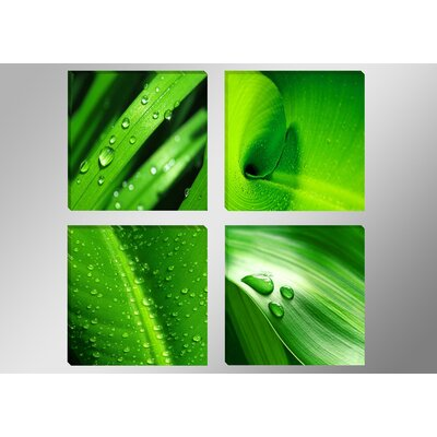 Urban Designs Leaves 4 Piece Photographic Print Wrapped on Canvas Set