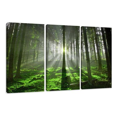 Alpen Home Guadalupe Ridge Forest Light Trees 3 Piece Photographic Print on Canvas Set