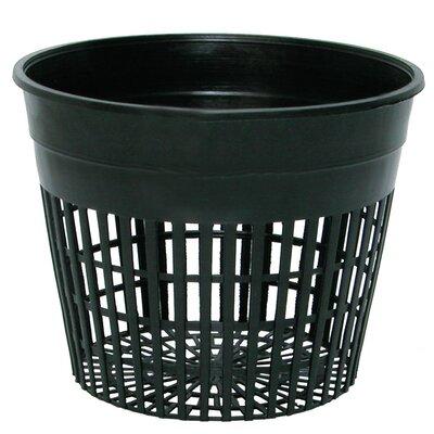 "Plastic Nursery Pot Size: 5"""