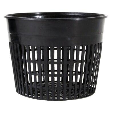 "Plastic Nursery Pot Size: 6"""