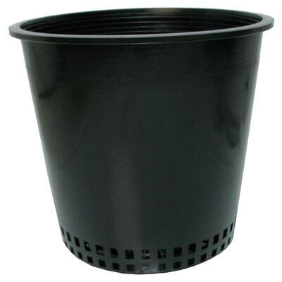 """Plastic Pot Planter Size: 8"""""""