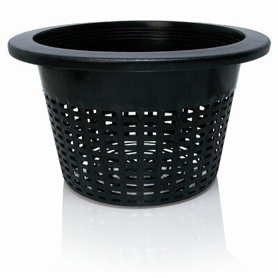 Nursery Pot (Set of 50)