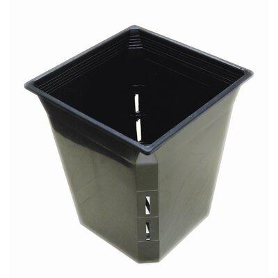 Plastic Pot Planter